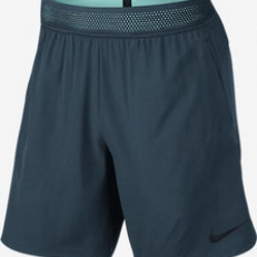 Nike Flex Repel Training Shorts